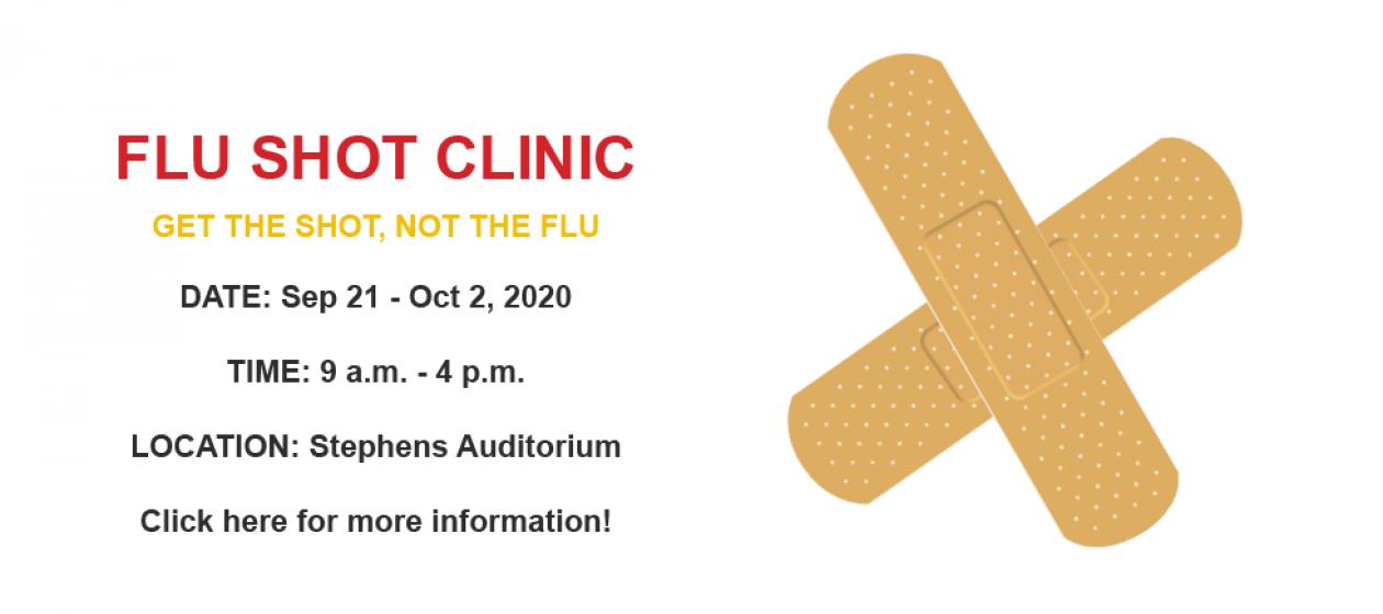 Flu info 2020