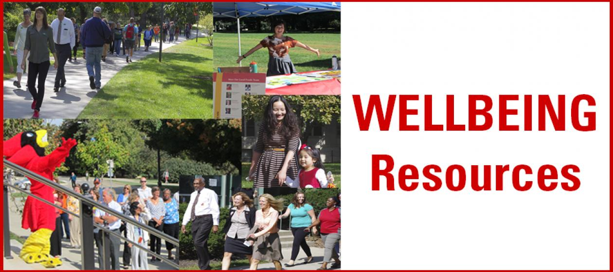 Wellbeing Resources with Border