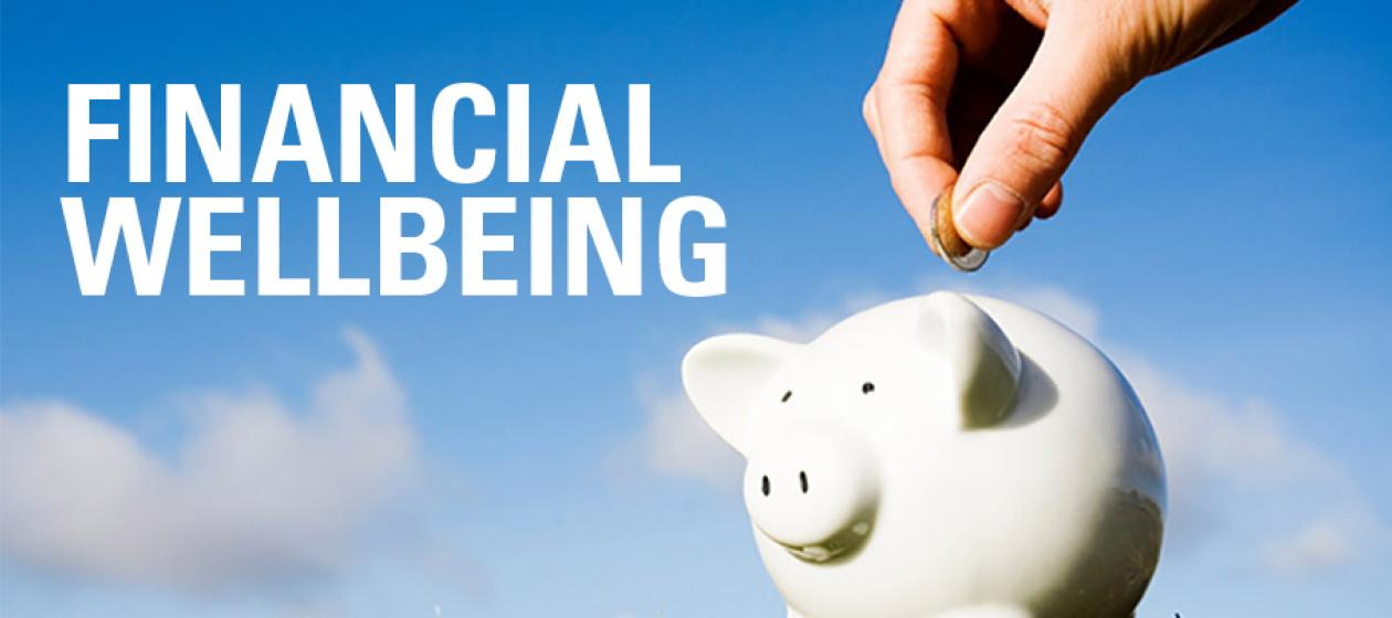 Financial Well-being2