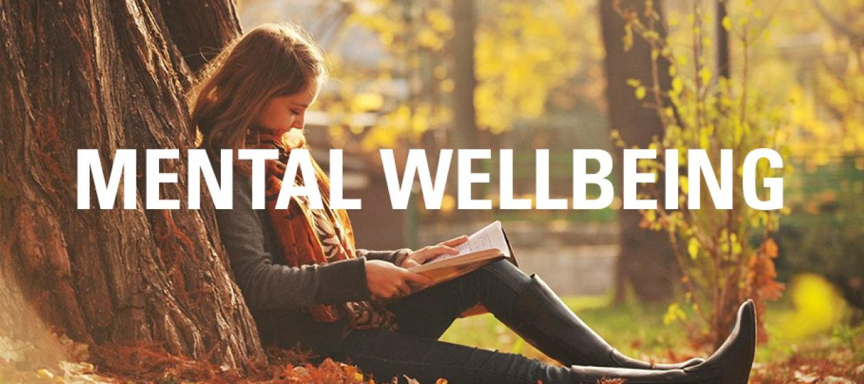 Mental Well-being2